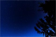 Le ciel nocturne ... suffit juste de lever la tête ...