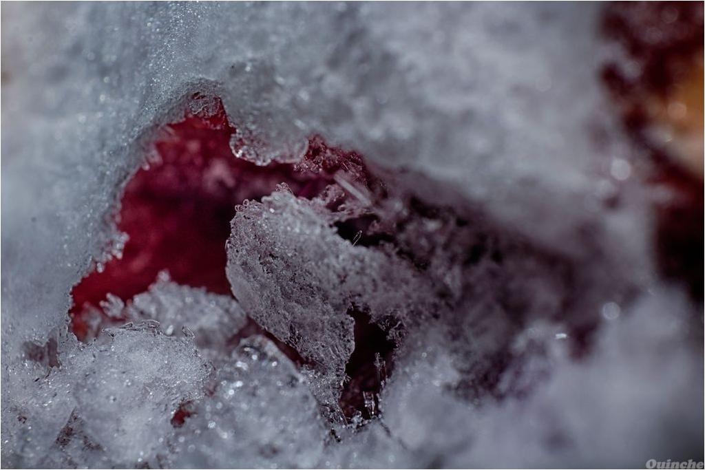 [Défi 52] Thème Semaine n°3: Le Froid