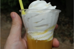 PineApple_WHIP_1024