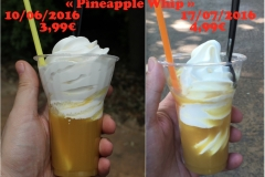 comparaison_pineapple_whip_1024
