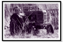 Tracteur VINEYARD rouillant au soleil