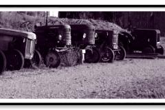 Alignement de vieux tracteurs, dont 2 MASSEY - HARRIS